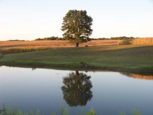 Butler Farms Outdoor Adventures
